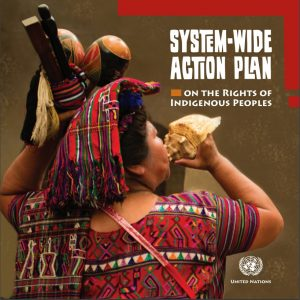 sys-wide-action-plan