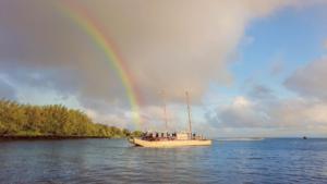 Nia Tero and Indigenous Guardianship in Pasifika